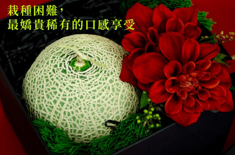 瓜中之王-日本種頂級阿露斯洋香瓜